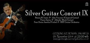 Silver Guitar Concert IX